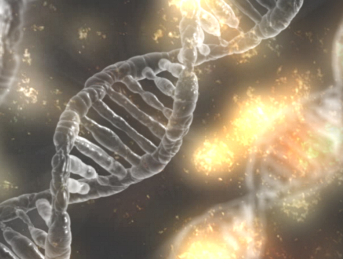DNA DNS Web VI